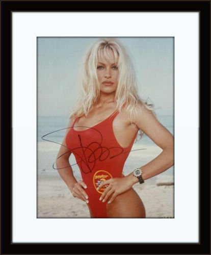 Framed Pamela Anderson Photo Autograph with COA