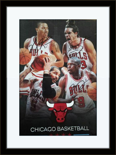 Framed Chicago Bulls Rose Deng Noah Boozer Photo Autograph with COA